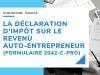Déclaration-dimpôt-auto-entrepreneur