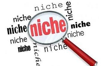 niche-business